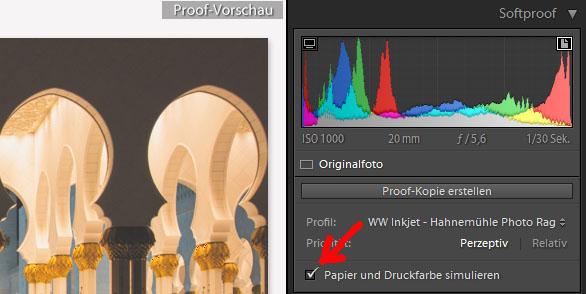 Papier- und Druckfarbensimulation