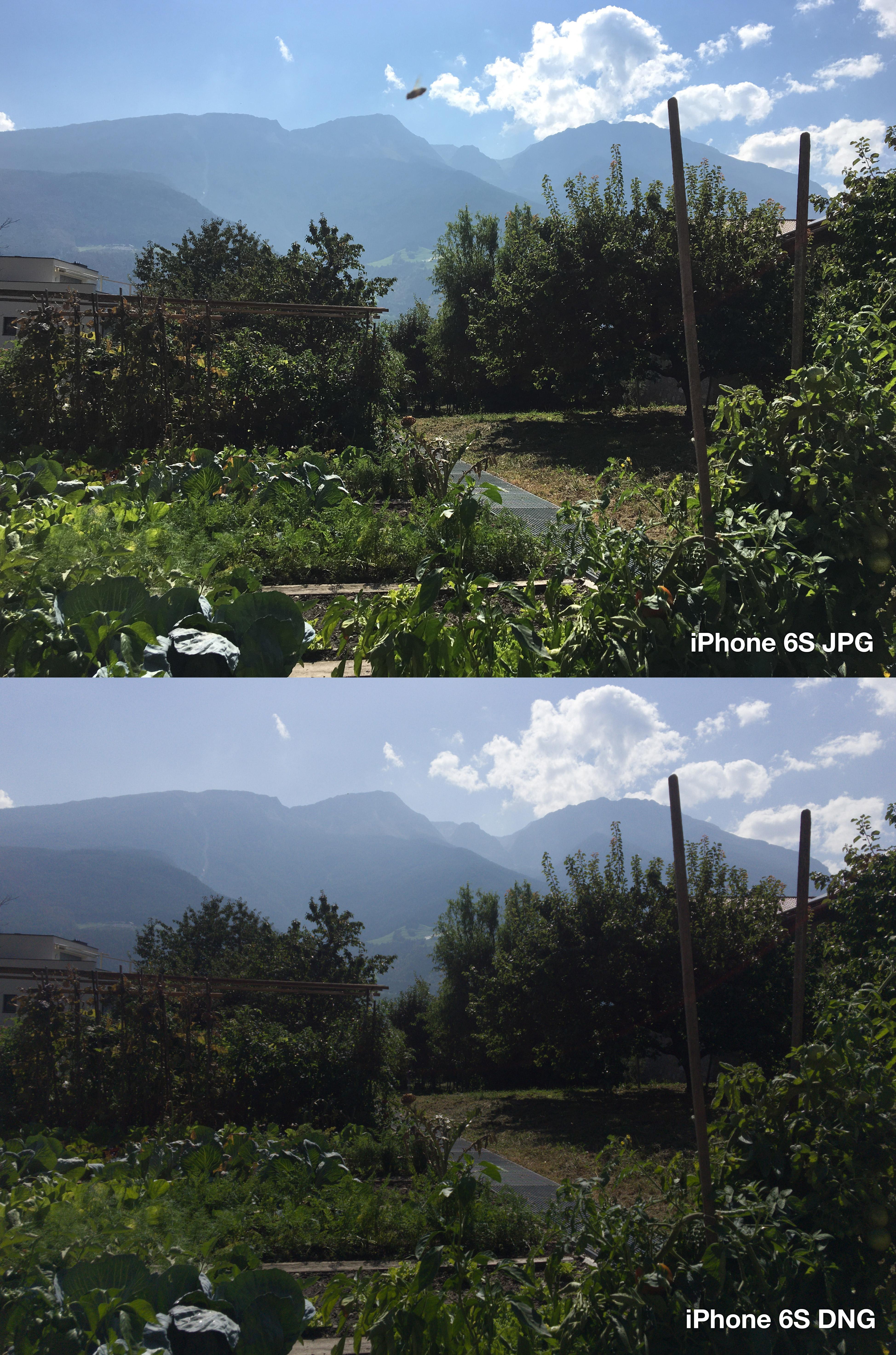 iphone-6s-lightroom-jpg-vs-dng-4