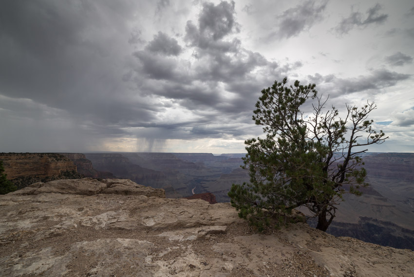 Grand Canyon - Martin