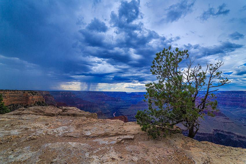 Grand Canyonwsh