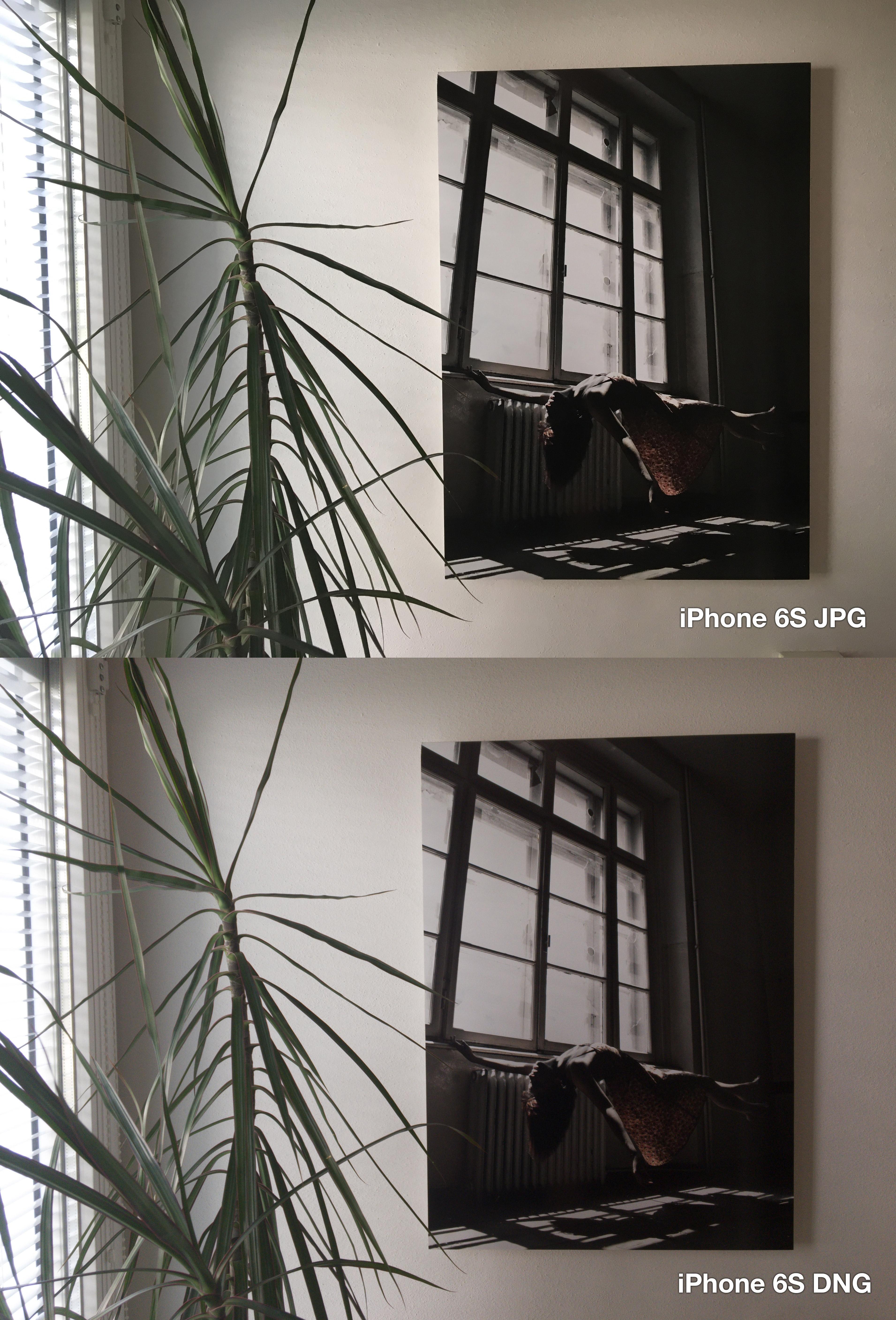iphone-6s-lightroom-jpg-vs-dng-2