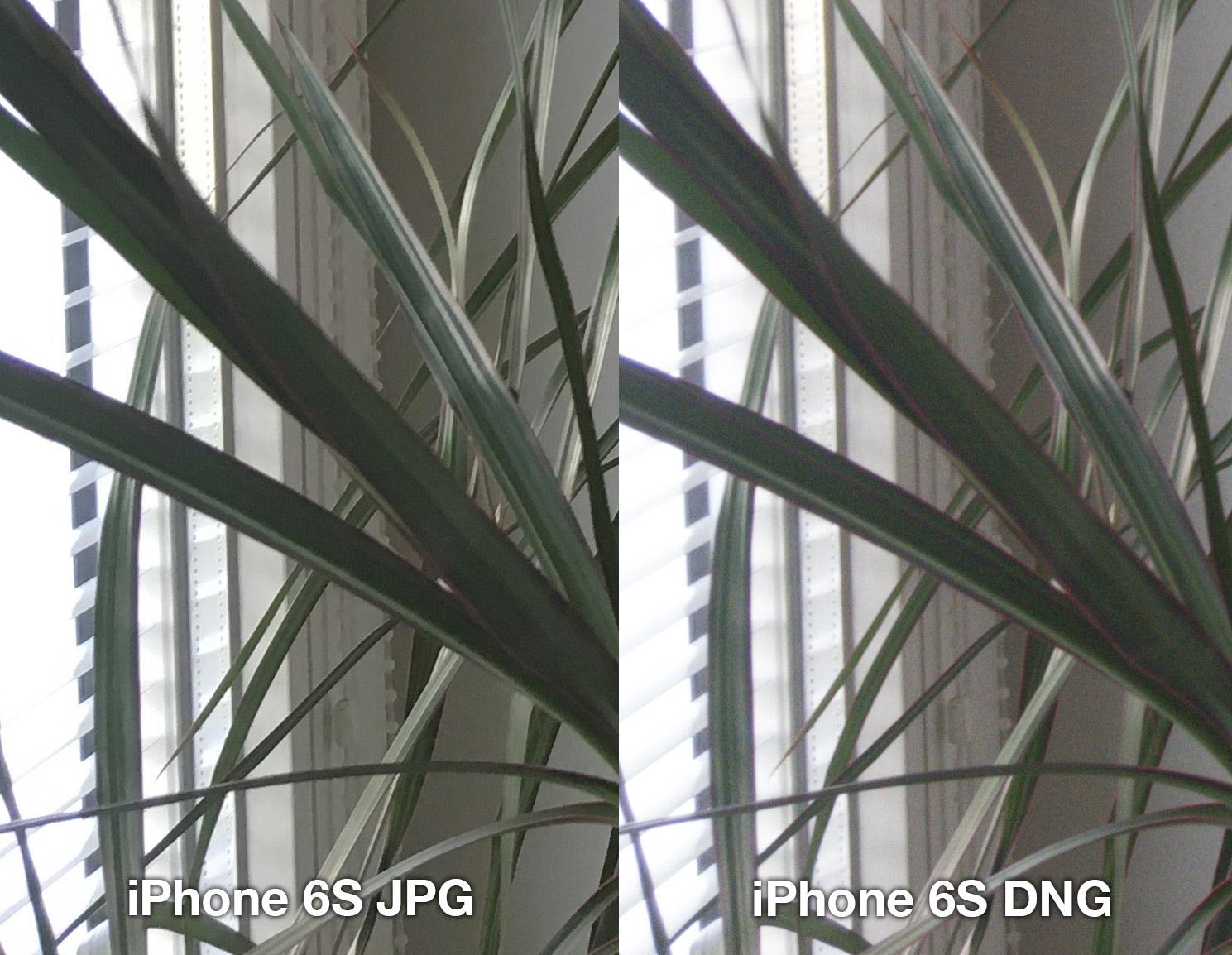 iphone-6s-lightroom-jpg-vs-dng-3